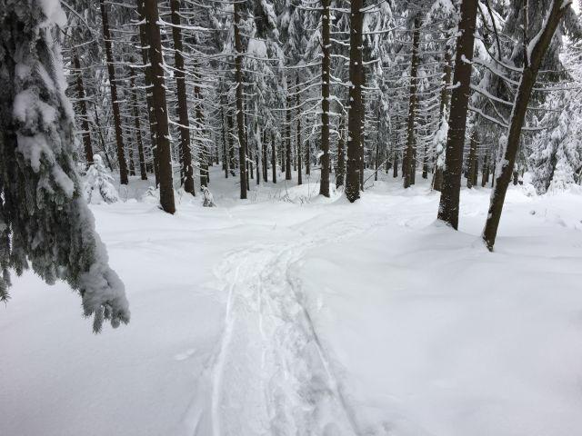 Zimní procházka po okolí Amálky | Pronájem chalupy Jizerské hory