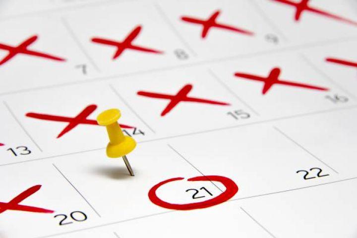 Kalendář obsazenosti